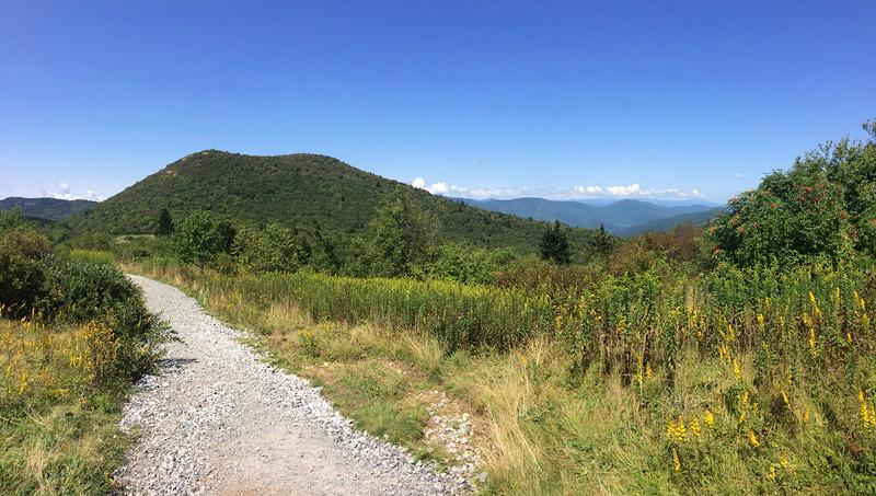 Sam Knob Trail -- 5,760'