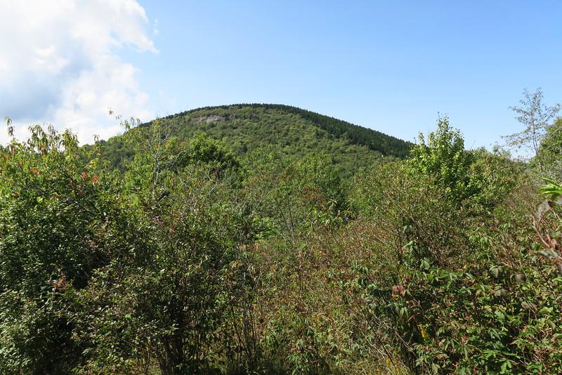 Sam Knob Trail -- 5,550'