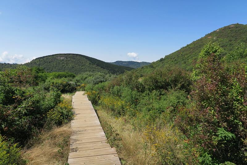 Sam Knob Trail -- 5,740'