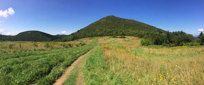 Sam Knob Trail -- 5,660'
