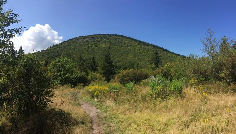 Sam Knob Trail -- 5,480'