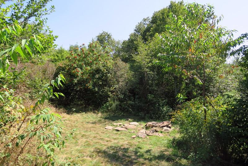 Sam Knob Trail -- 5,450'