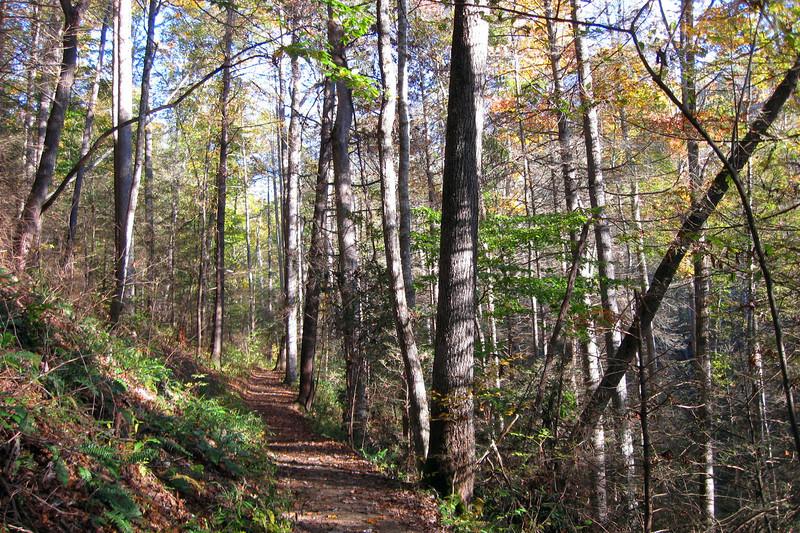 Looking Glass Rock Trail