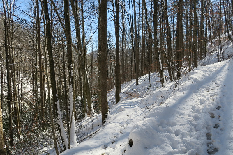 Looking Glass Rock Trail - 2,580'