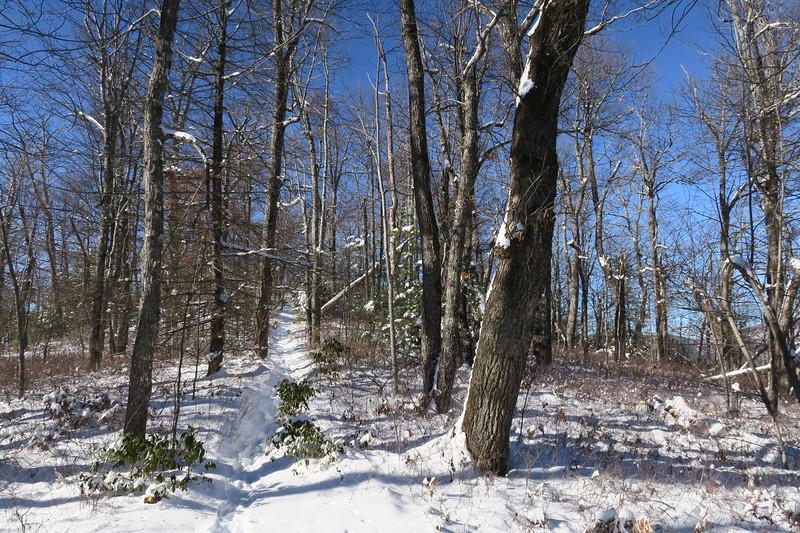 Looking Glass Rock Trail - 3,920'