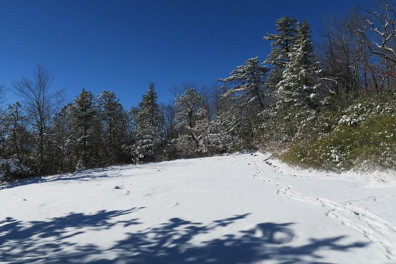 West Cliff Spur Path - 3,520'