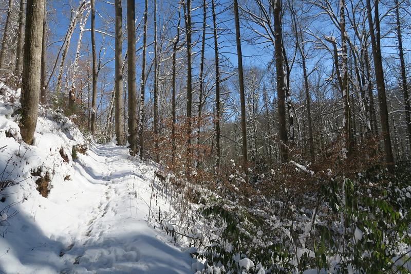 Looking Glass Rock Trail - 2,400'