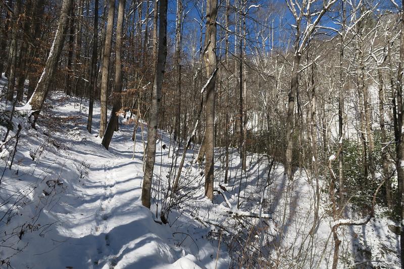 Looking Glass Rock Trail - 2,450'