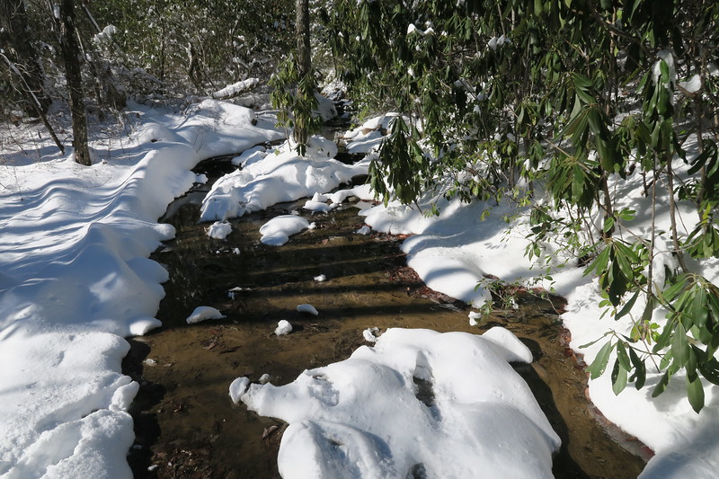 Looking Glass Rock Trail - 3,600'