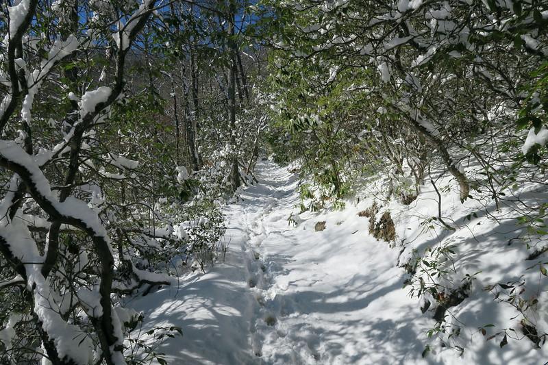 Looking Glass Rock Trail - 2,900'