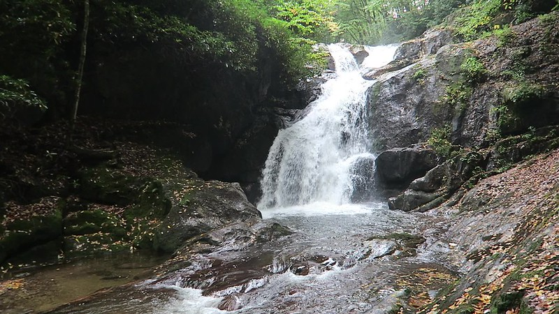 Middle Prong Falls