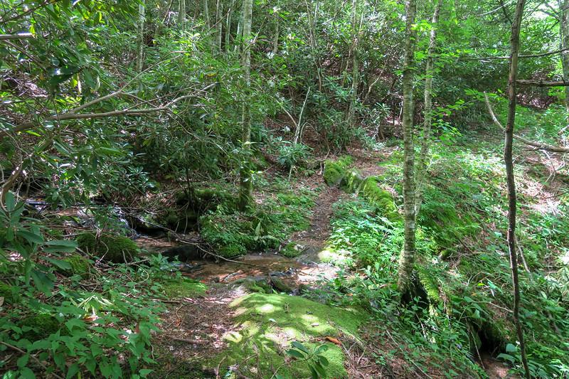 Buckeye Gap Trail -- 5,380'