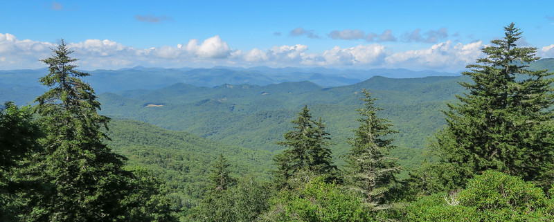 Rough Butt Bald Overlook - Blue Ridge Parkway -- 5,400'