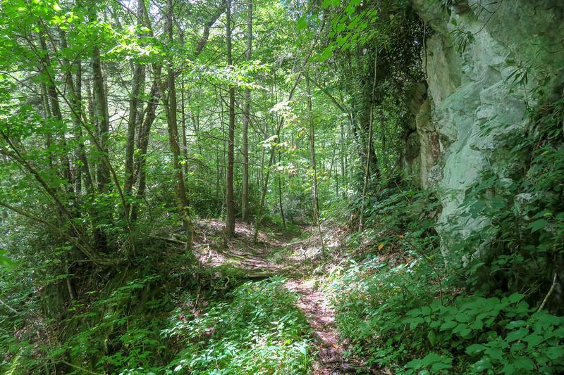 Haywood Gap Trail -- 4,280'