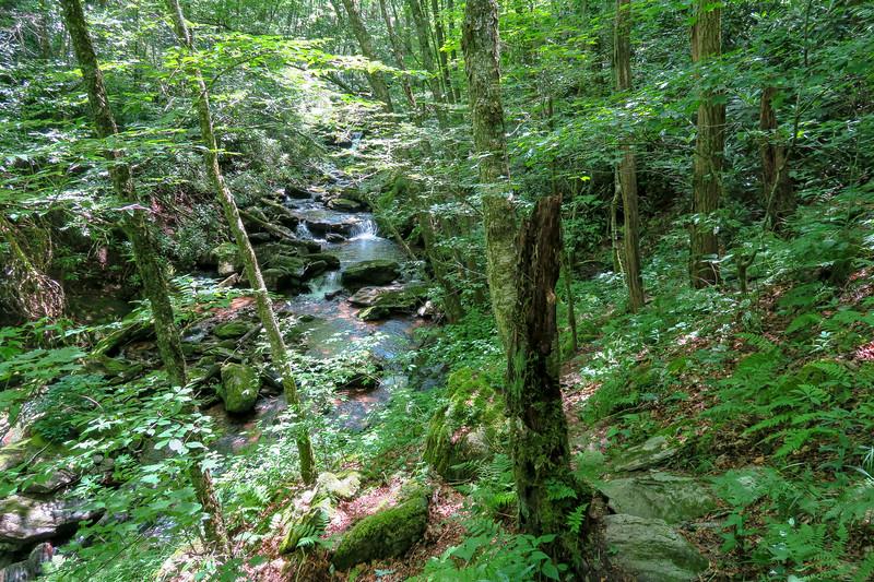 Haywood Gap Trail -- 4,620'