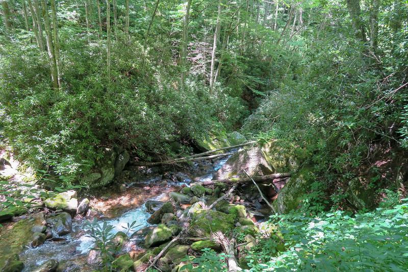 Haywood Gap Trail -- 3,900'
