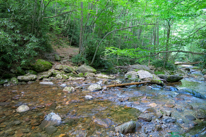 Haywood Gap Trail @ Middle Prong West Fork Pigeon River -- 3,750'