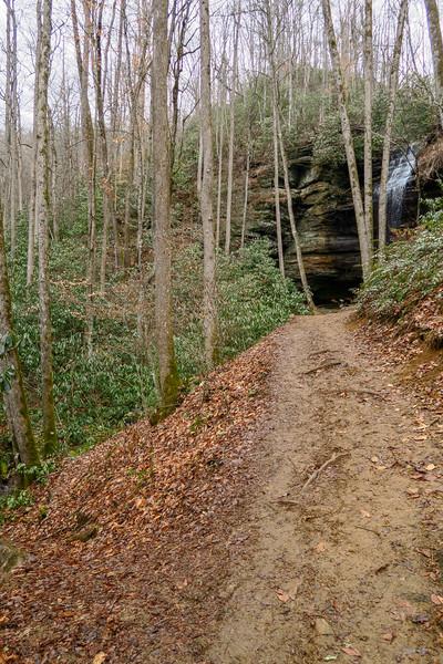 Moore Cove Trail -- 2,580'