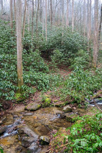 Unnamed Falls Path -- 2,570'