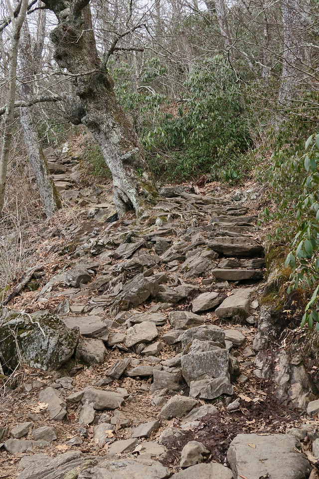 Mount Pisgah Trail