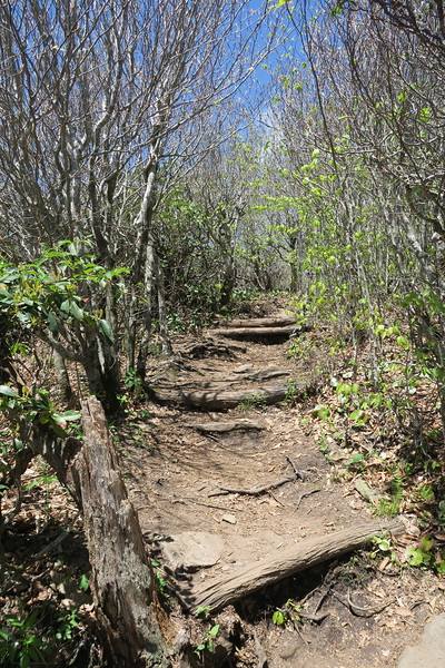 Mount Pisgah Trail -- 5,680'