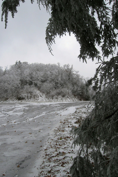 Buck Springs Gap Overlook
