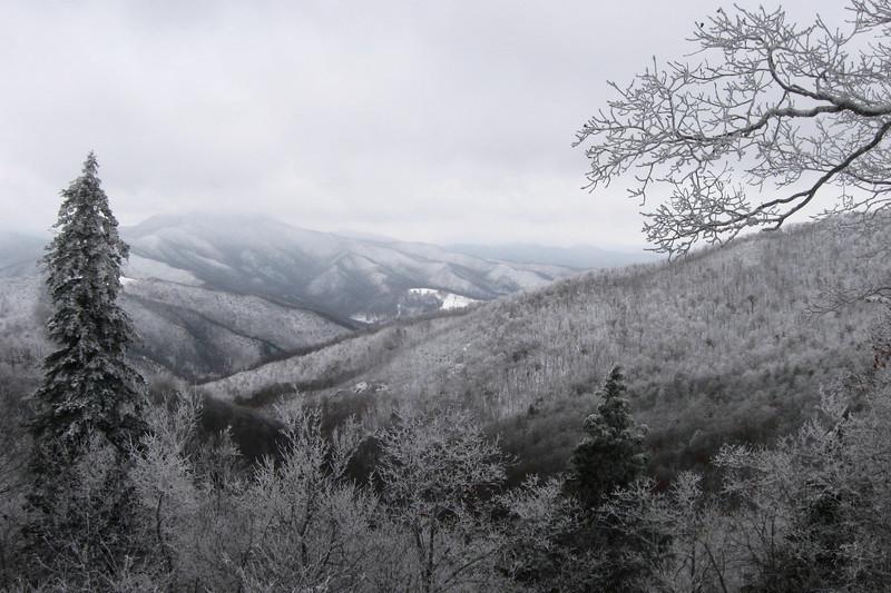 Buck Springs Gap Overloo