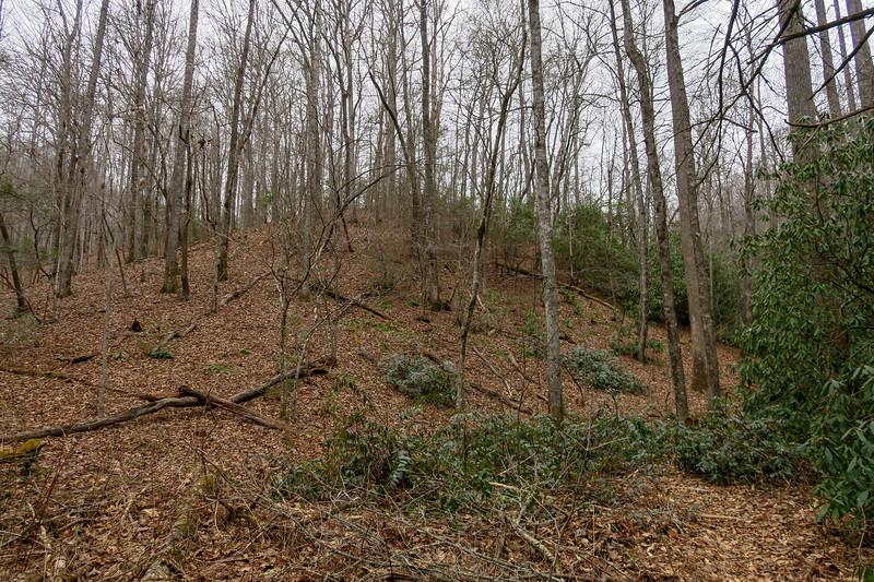 Poundingmill Trail -- 2,680'