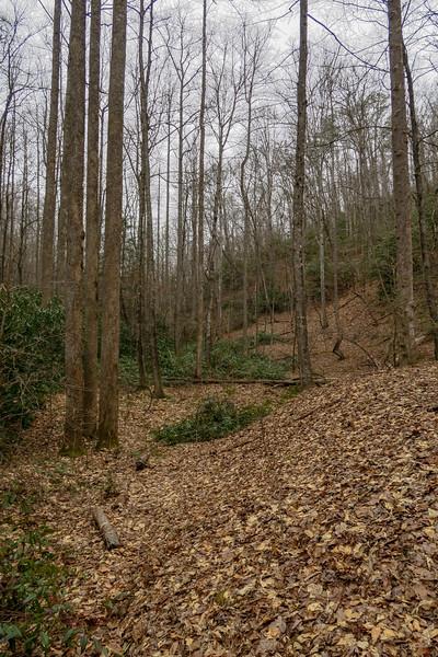 Poundingmill Trail -- 2,620'