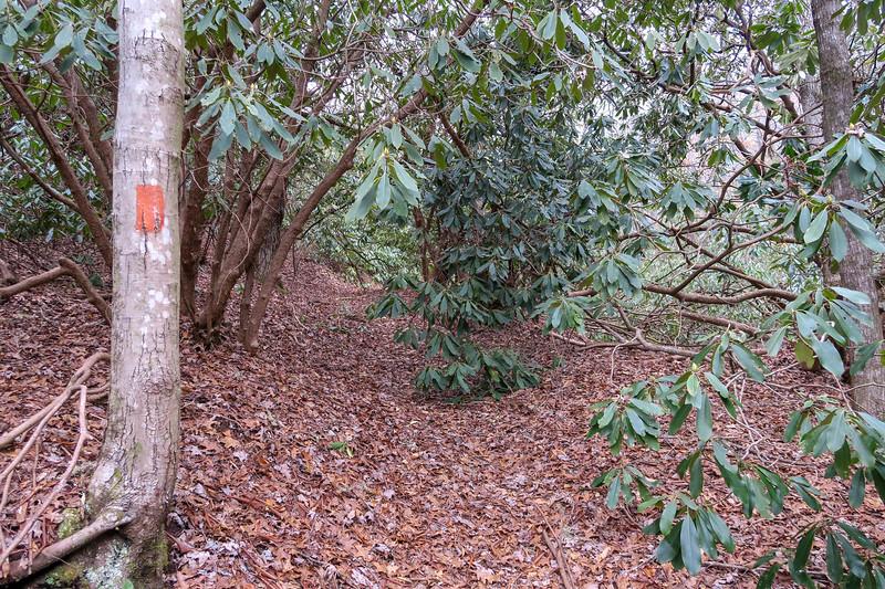 Poundingmill Trail -- 2,480'
