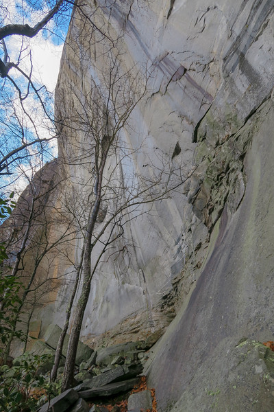 North Face of Looking Glass Rock -- 3,280'