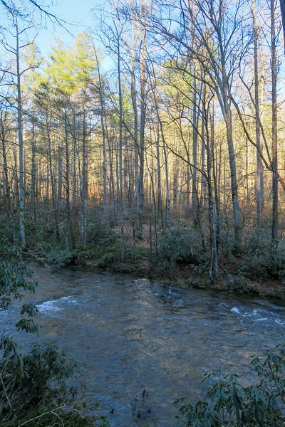 Davidson River -- 2,200'