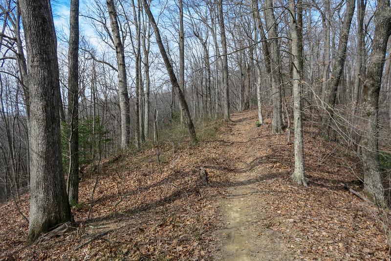 Bennett Gap/Coontree Loop Trail -- 3,020'