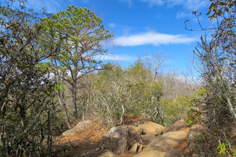 Bennett Gap Trail @ Overlook Rock -- 3,450'
