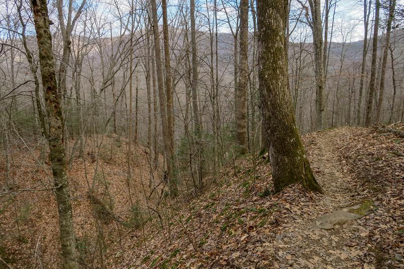 Bennett Gap Trail -- 2,700'