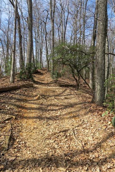 Bennett Gap/Coontree Loop Trail -- 3,200'