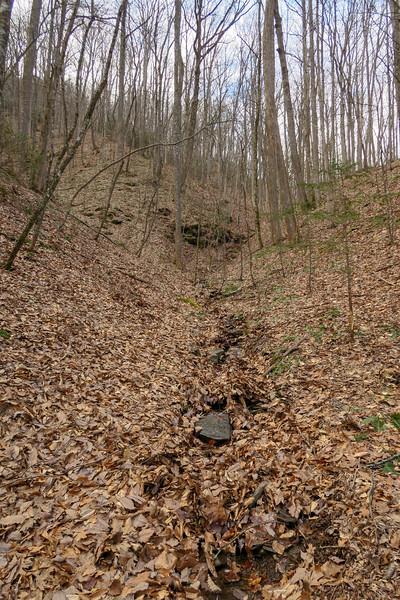 Bennett Gap Trail -- 2,750'