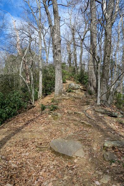 Bennett Gap Trail -- 3,360'