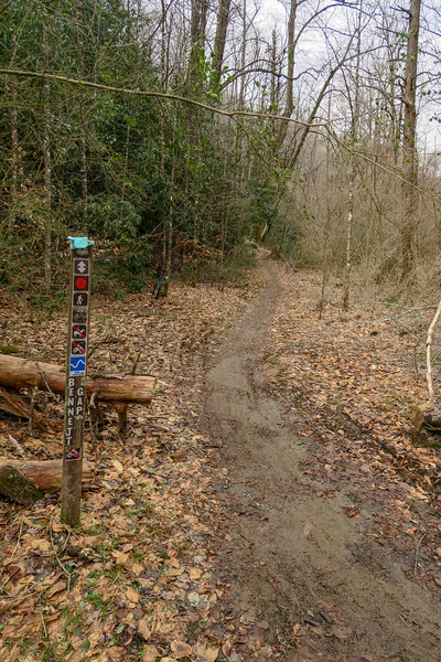 Bennett Gap Trail -- 2,320'