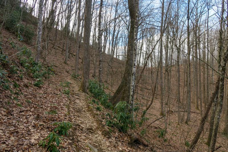Bennett Gap Trail -- 2,900'