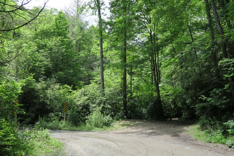 Pilot Cove Trailhead on Forest Road 1206