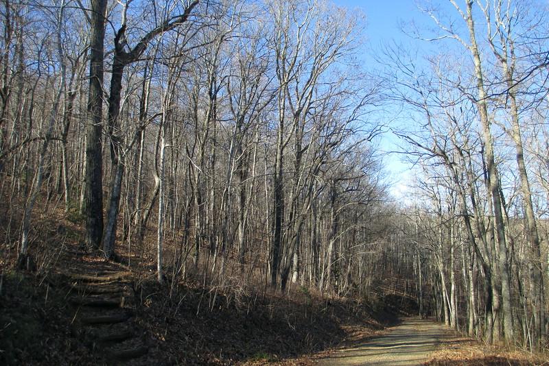 Art Loeb Trail - 3,680'
