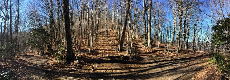 Art Loeb Trail - 4,580'