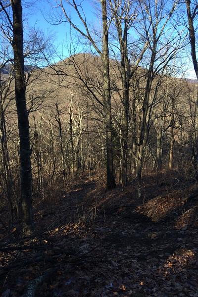 Art Loeb Trail - 4,650'
