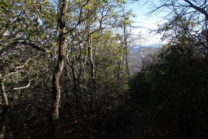 Art Loeb Trail - 4,480'