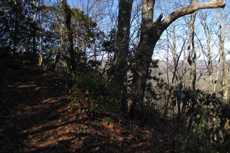 Art Loeb Trail - 4,350'