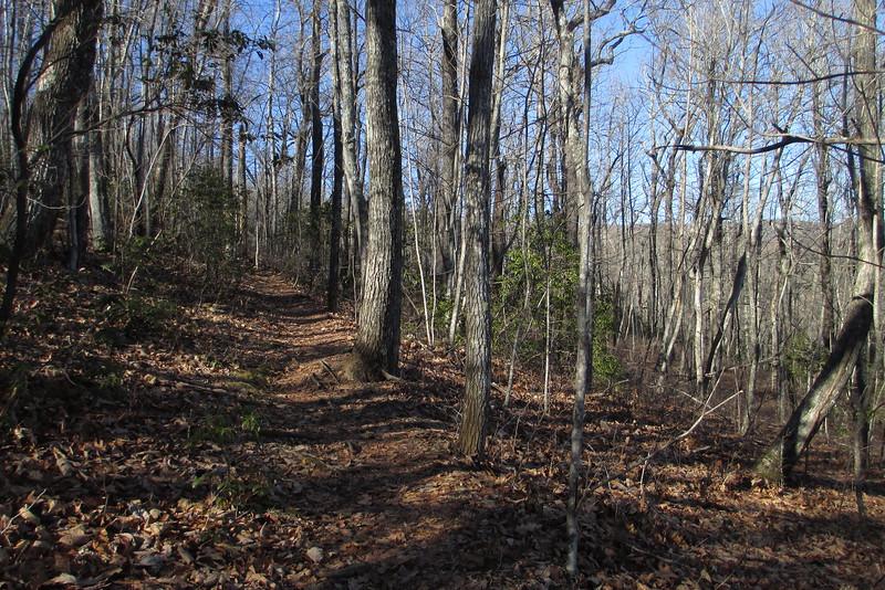 Art Loeb Trail - 3,400'