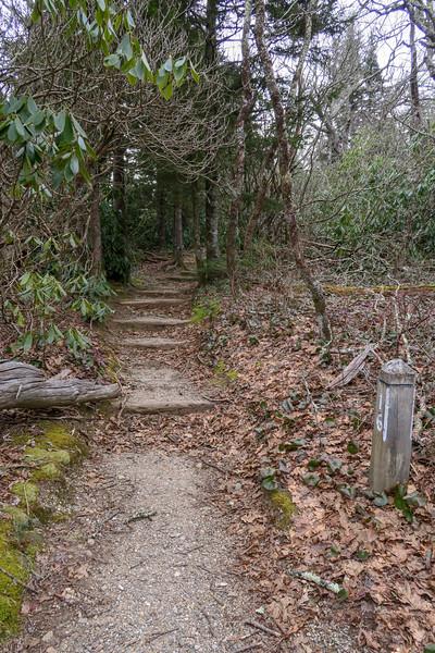Mountains-to-Sea Trail -- 5,000'