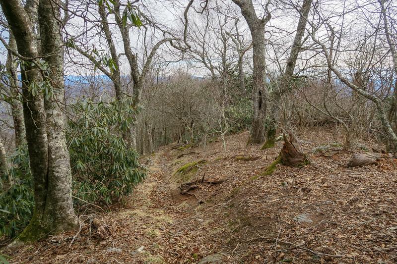 Pilot Rock Trail -- 5,050'