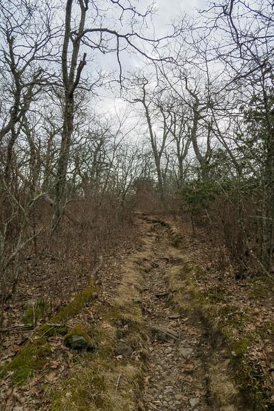 Pilot Rock Trail -- 5,200'